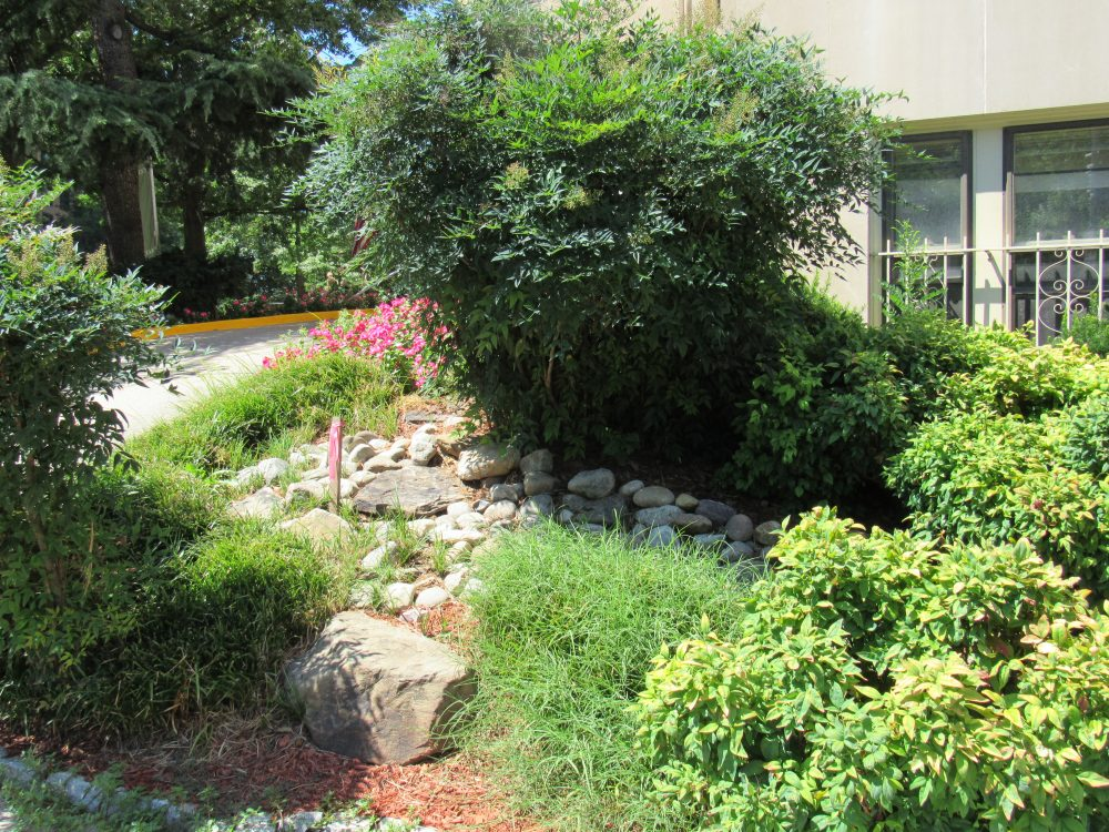 Martin-Landscaping-100418-9750a